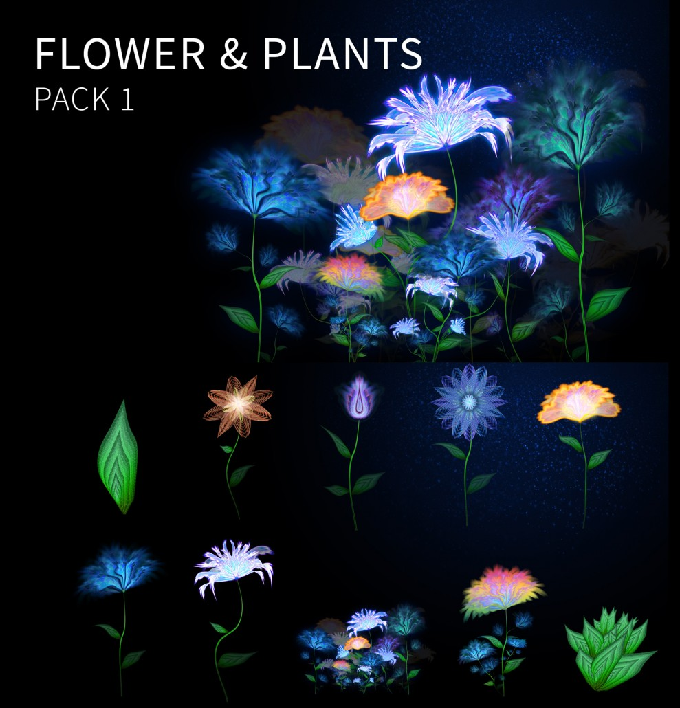 Flowers-and-plants-pack-for-sale
