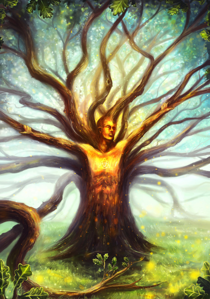 Oak By louis Dyer3