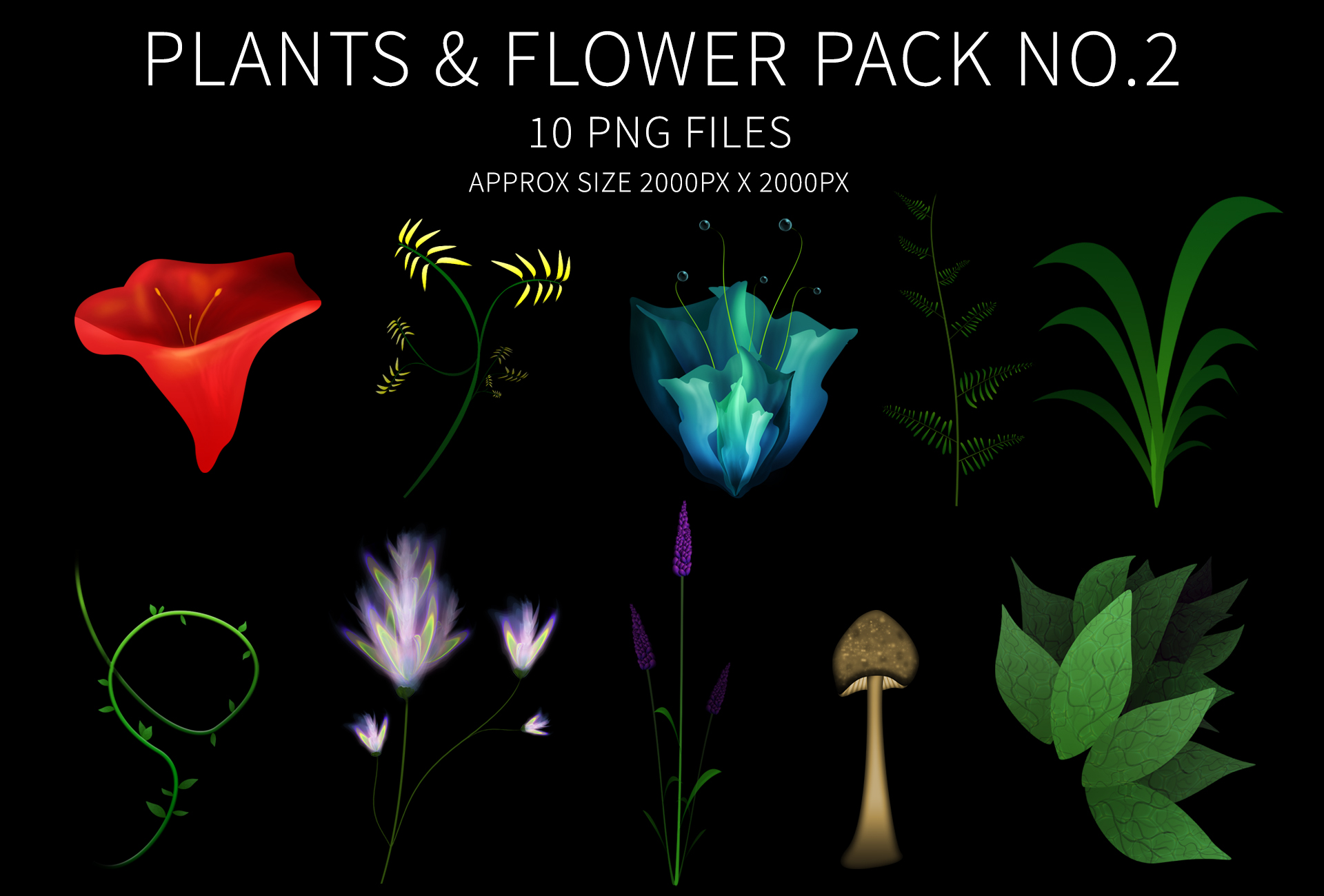 Plants flower pack 2