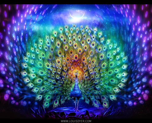 Psychedelic peacock painting from visionary artist louis dyer